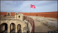 blog-indicatif-fort-octobrerose-2013.png