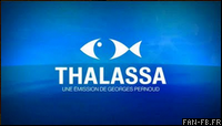 Blog indicatif thalassa 2010