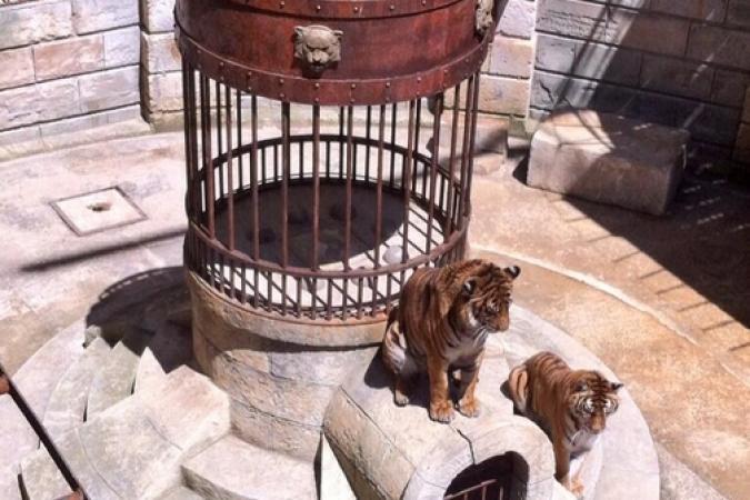 Fort Boyard 2014 : Les tigres gardent le trésor (30/05/2014 - A. Laborde)