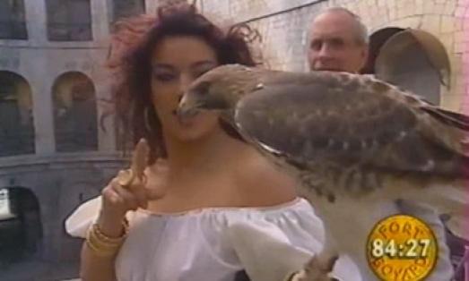 Les animaux de Fort Boyard - L'aigle