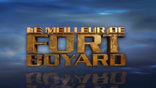 """Logo """"Le Meilleur de Fort Boyard - 20 ans"""" version quotidiennes (août 2009)"""