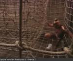 L'épreuve de l'Antre filet en 1992