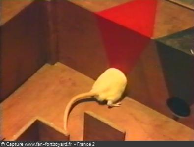 Fort Boyard 1994 : Le rat blanc qui entre dans une porte rouge