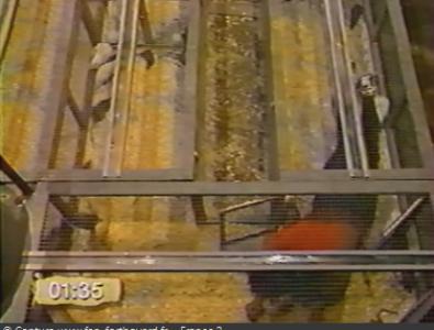 Fort Boyard 1994 : La nouvelle aventure du Rampeur