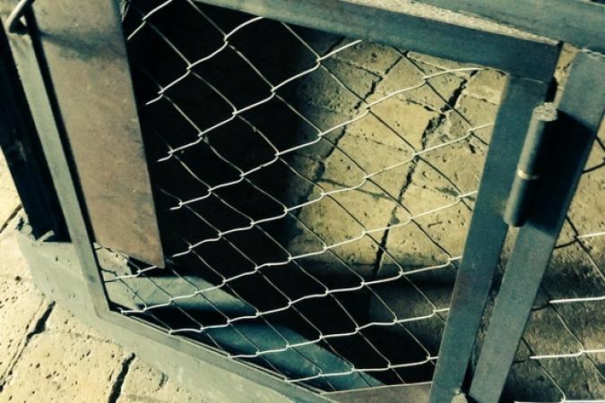 Fort Boyard 2016 - Une mystérieuse porte de cage (01/06/2016)