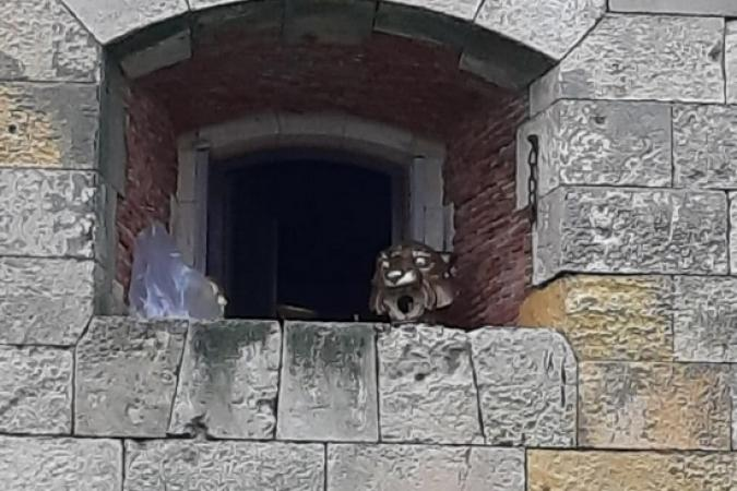 Fort Boyard 2019 - Scéne insolite sur une fenêtre du fort (10/05/2019)