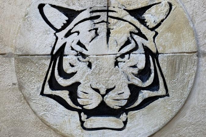 Fort Boyard 2019 - Une tête de tigre du mobilier de 2e partie de soirée (15/05/2019)
