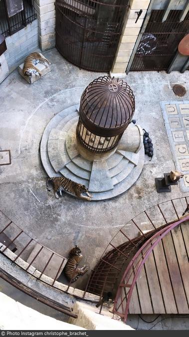 Fort Boyard 2019 - Les tigres sont en pause (20/05/2019)