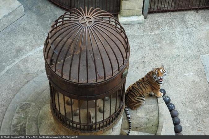Fort Boyard 2020 - Un tigre sur la Fontaine à Boyards de la Salle du Trésor