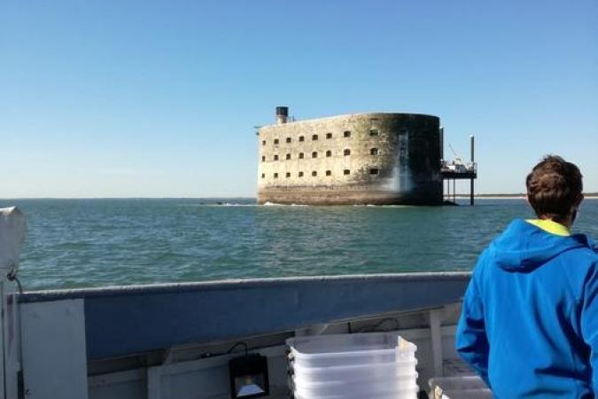 Fort Boyard 2020 - Arrivée matinale au fort (19/05/2020)