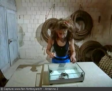 Fort Boyard - Araignées (version 2, émissions 14-15-16 de 1991)