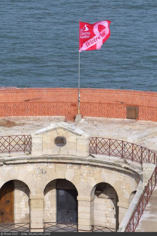 fort-boyard-octobre-rose-2013-1.png