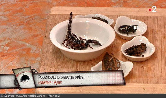 Fort Boyard - Chez Willy Rovelli - Farandole d'insectes frits